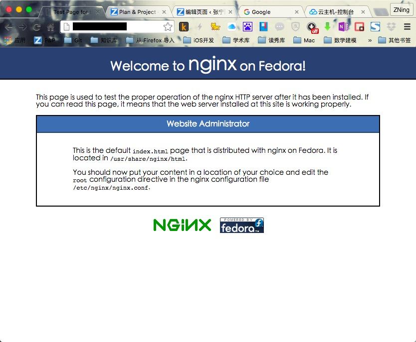 安装完成Nginx的页面